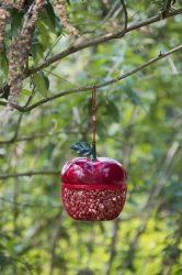 Madáretető, alma formájú