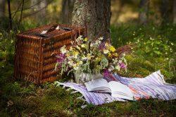 Piknik és egyebek